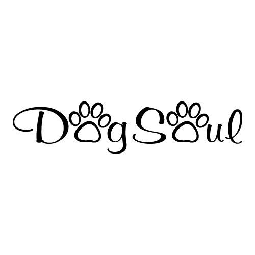 v-dog-soul-4