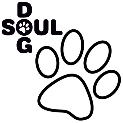 v-dog-soul-x-packa